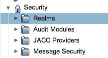 Selezionare Realm dal gruppo Security