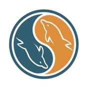 MySQL TEXT, MEDIUMTEXT e LONGTEXT … quali sono i limiti?