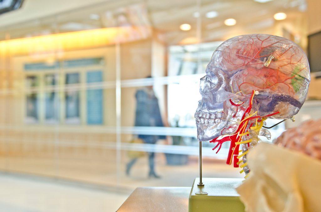 app mobile cervello