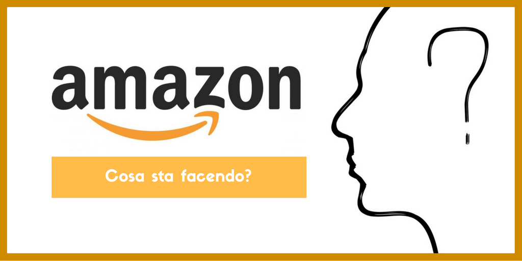 Amazon cosa fa